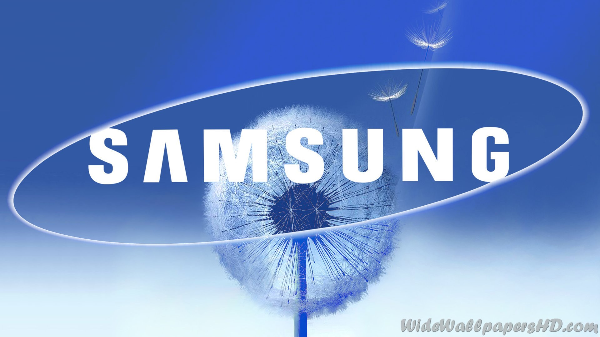 Samsung-Blue-Dandelion-Logo-Samsung-Wallpapers-1920×1080 ...