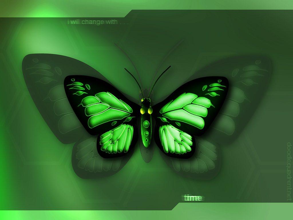 Desktop wallpaper windows wallpaper 3D Butterfly 1024x768