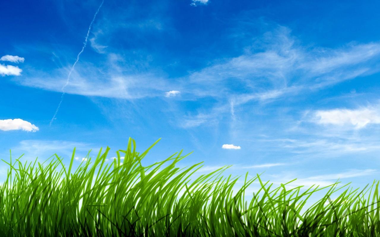 Grass and Sky Wallpaper - WallpaperSafari