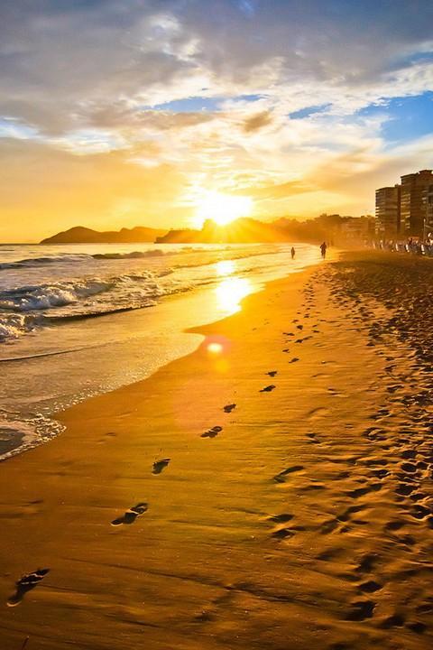 48+ Google Images Beach Wallpaper on WallpaperSafari