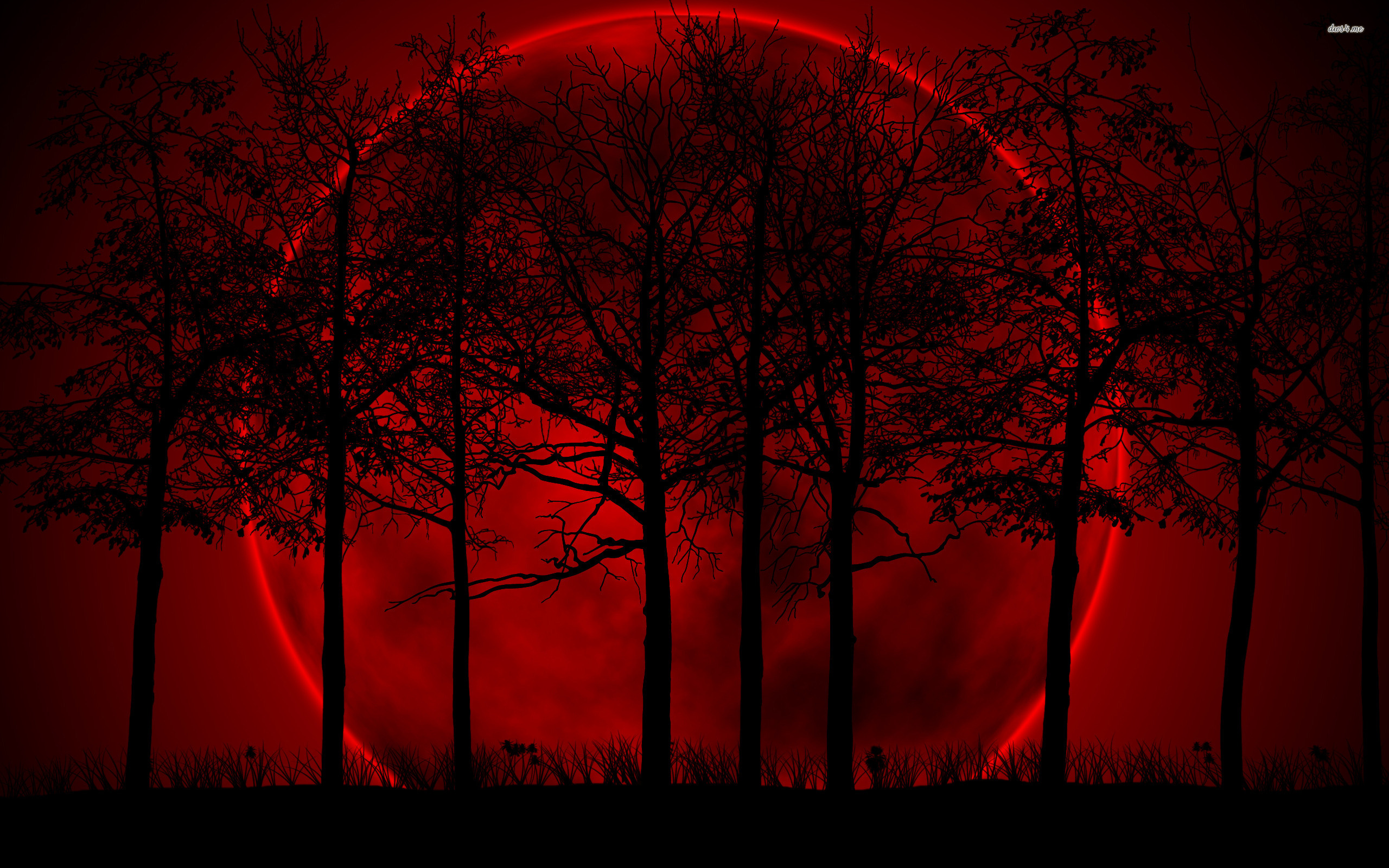 Red moon wallpaper wallpapersafari for Red wallpaper for walls