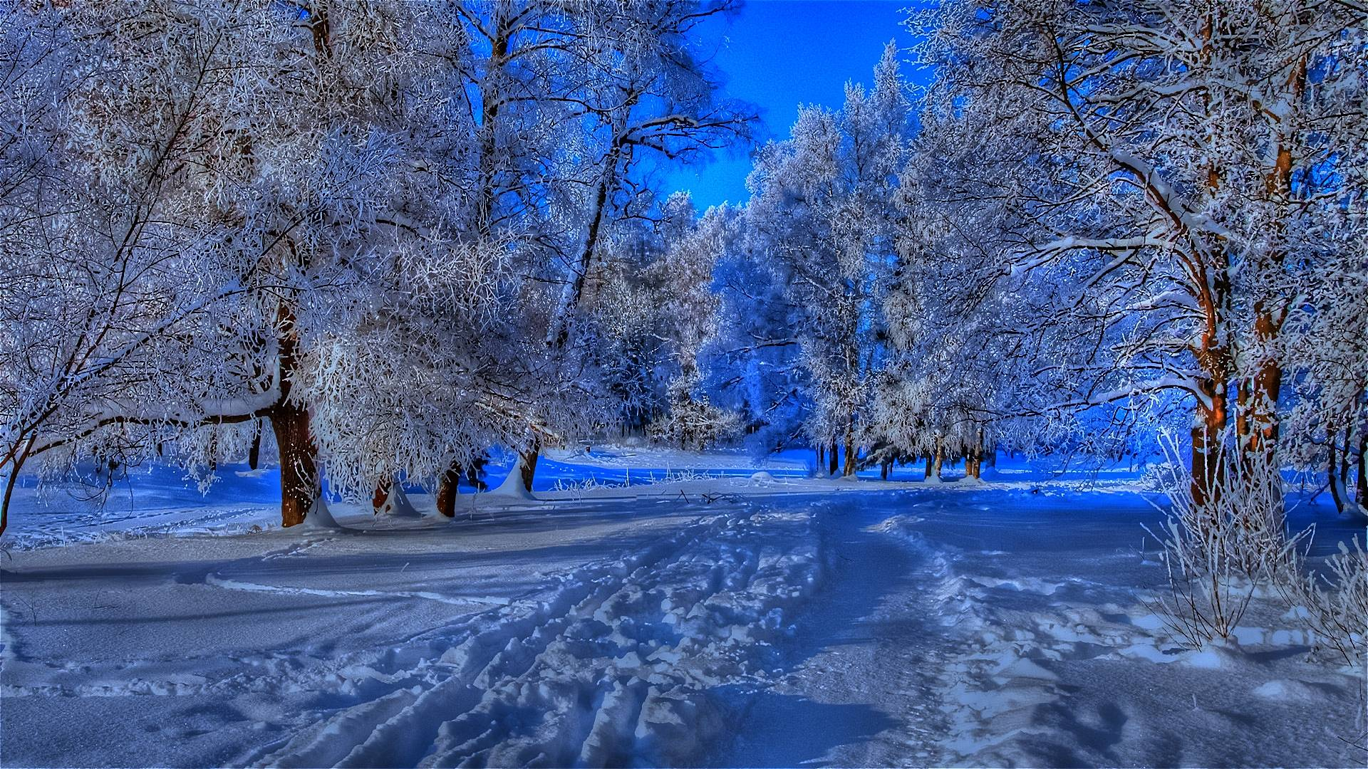 Beautiful Winter Backgrounds 1920x1080