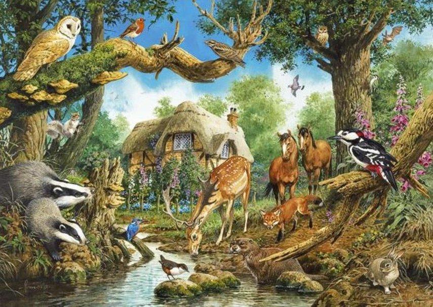 Woodland Creature Wallpaper Wallpapersafari