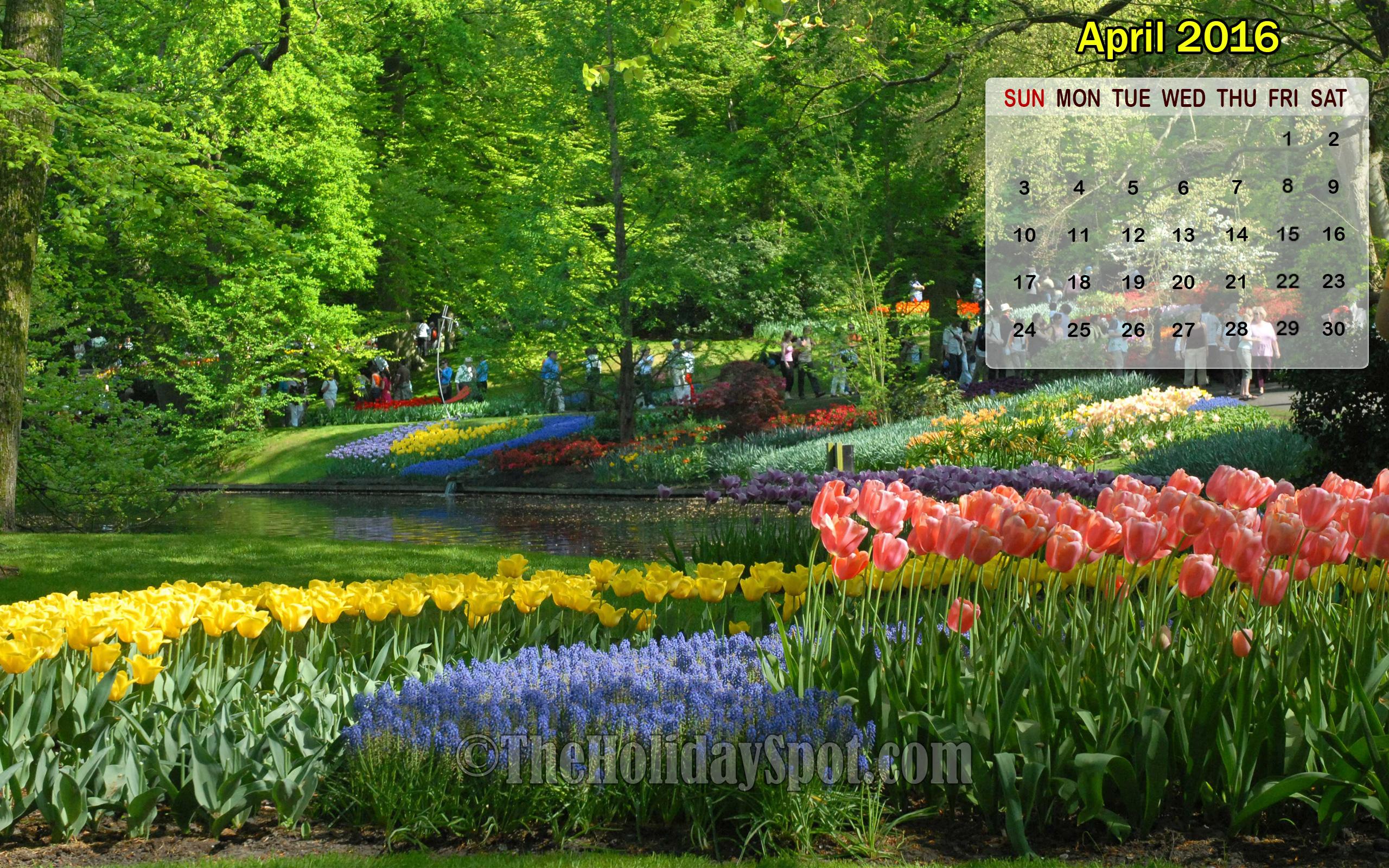 April 2016 Calendar Wallpaper of Tulip flowers 2560x1600