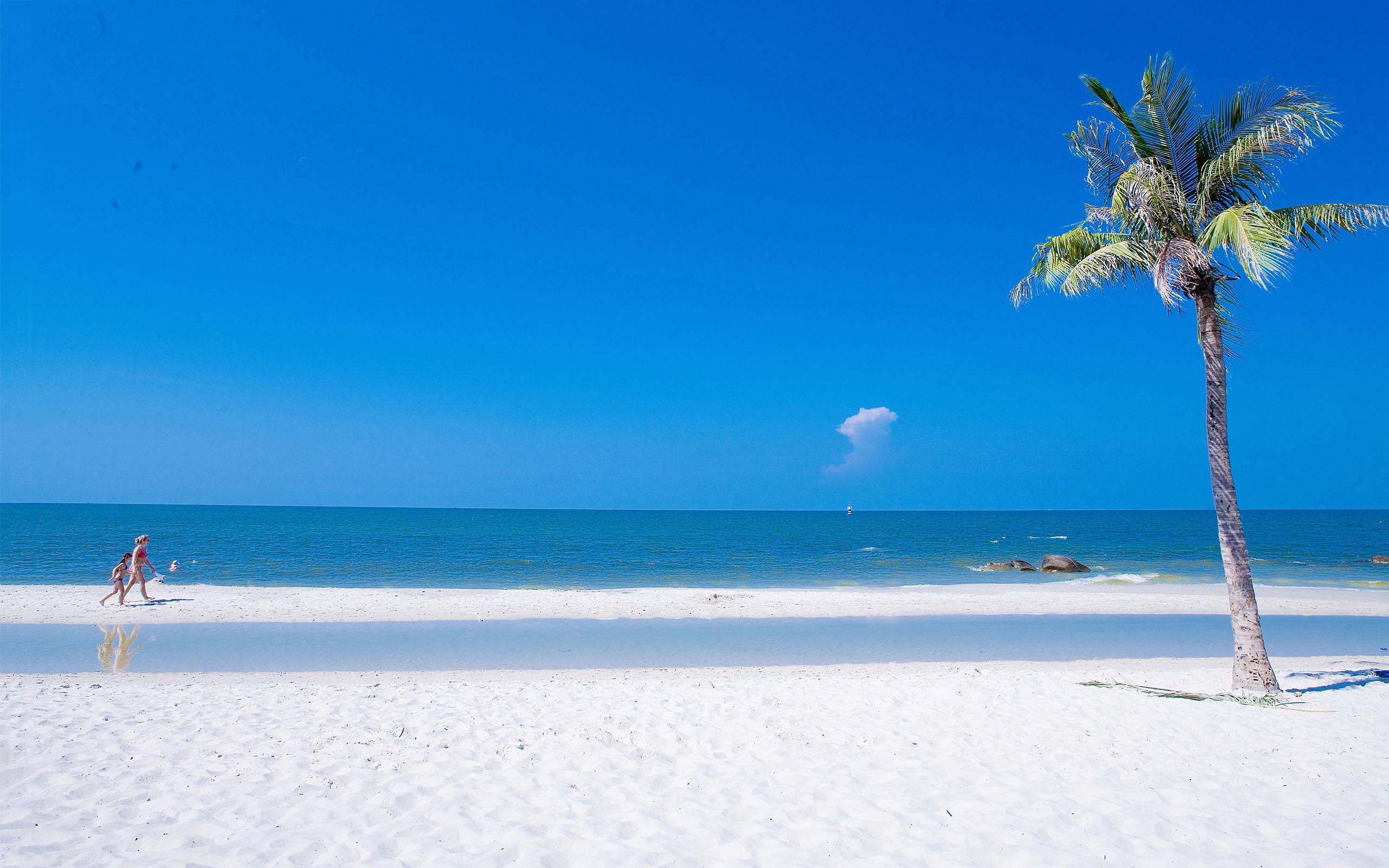 Beach Summer Ocean Wallpaper Full HD For Desktop 2560x1600