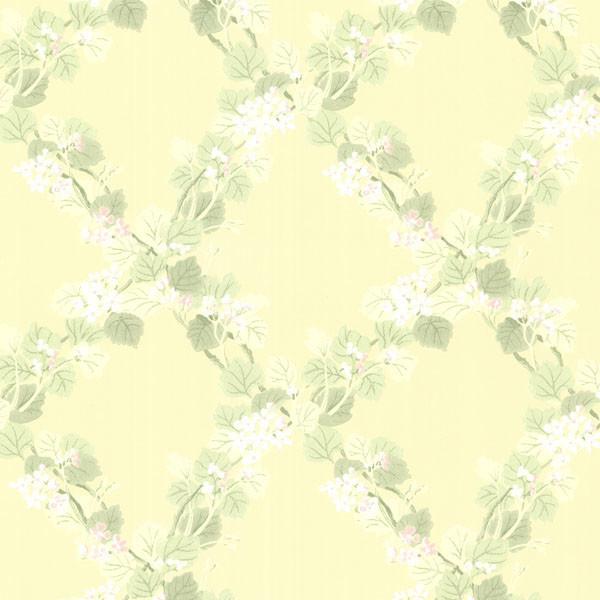 Delphia Yellow Jasmine Trellis Wallpaper   Contemporary   Wallpaper 600x600