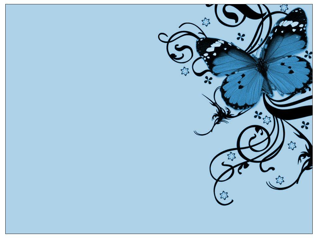 Butterflies Butterfly 1024x768
