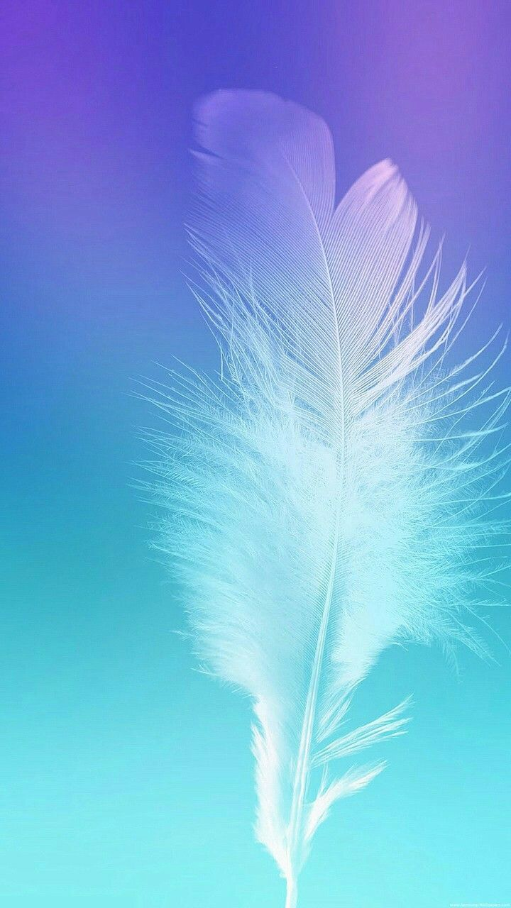 I find feathers Wallpapers in 2019 Galaxy wallpaper Samsung 720x1280