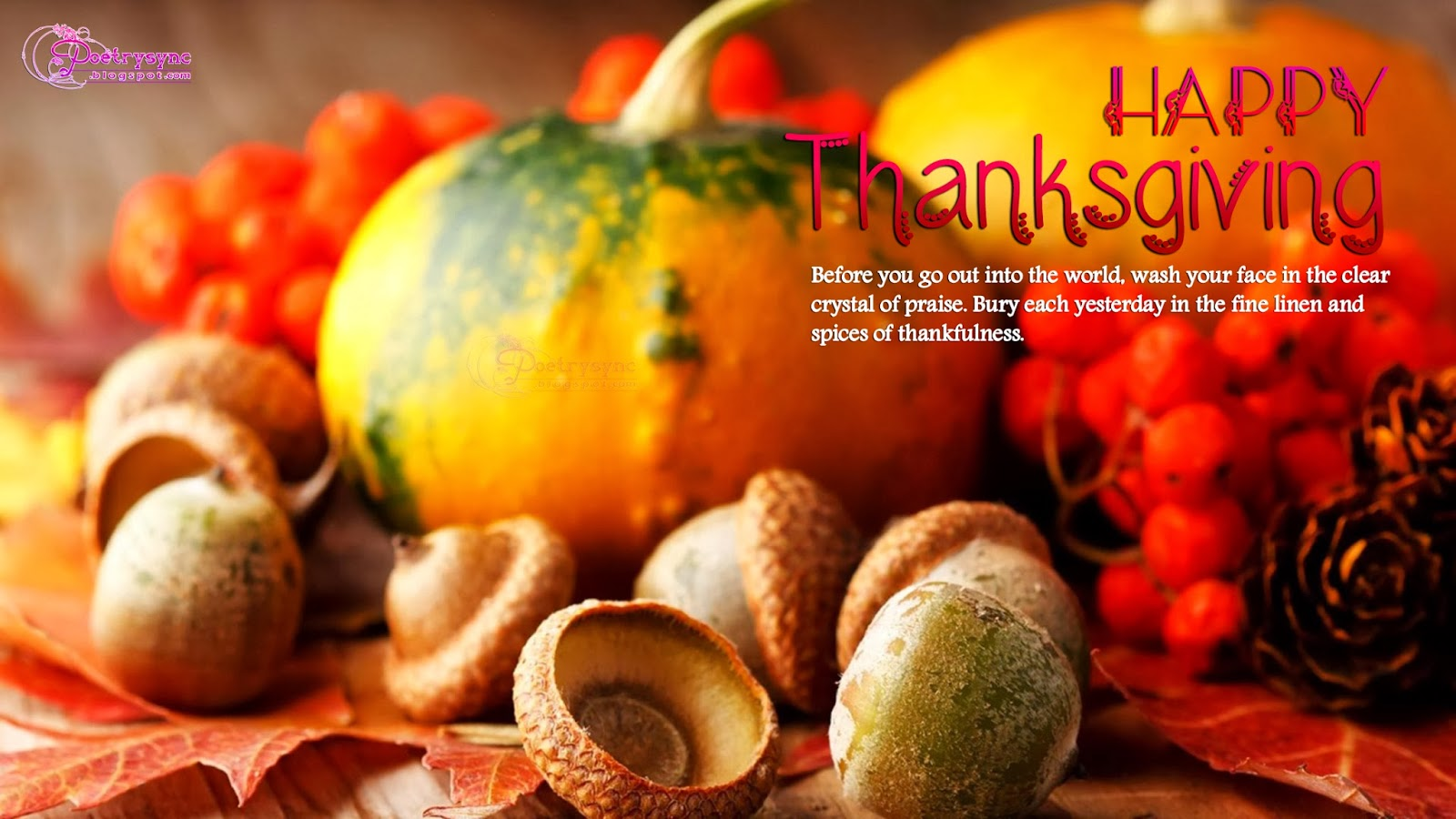 Happy Thanksgiving Wishes Card Wallpaper 2013 HD Widescreen Wallpapers 1600x900