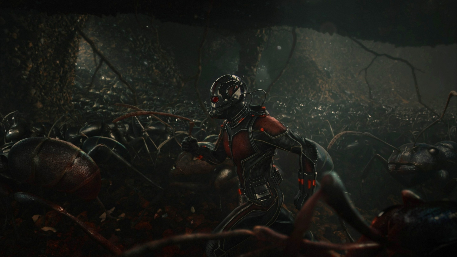 Ant Man With Ants 1920 x 1080 Download Close 1920x1080