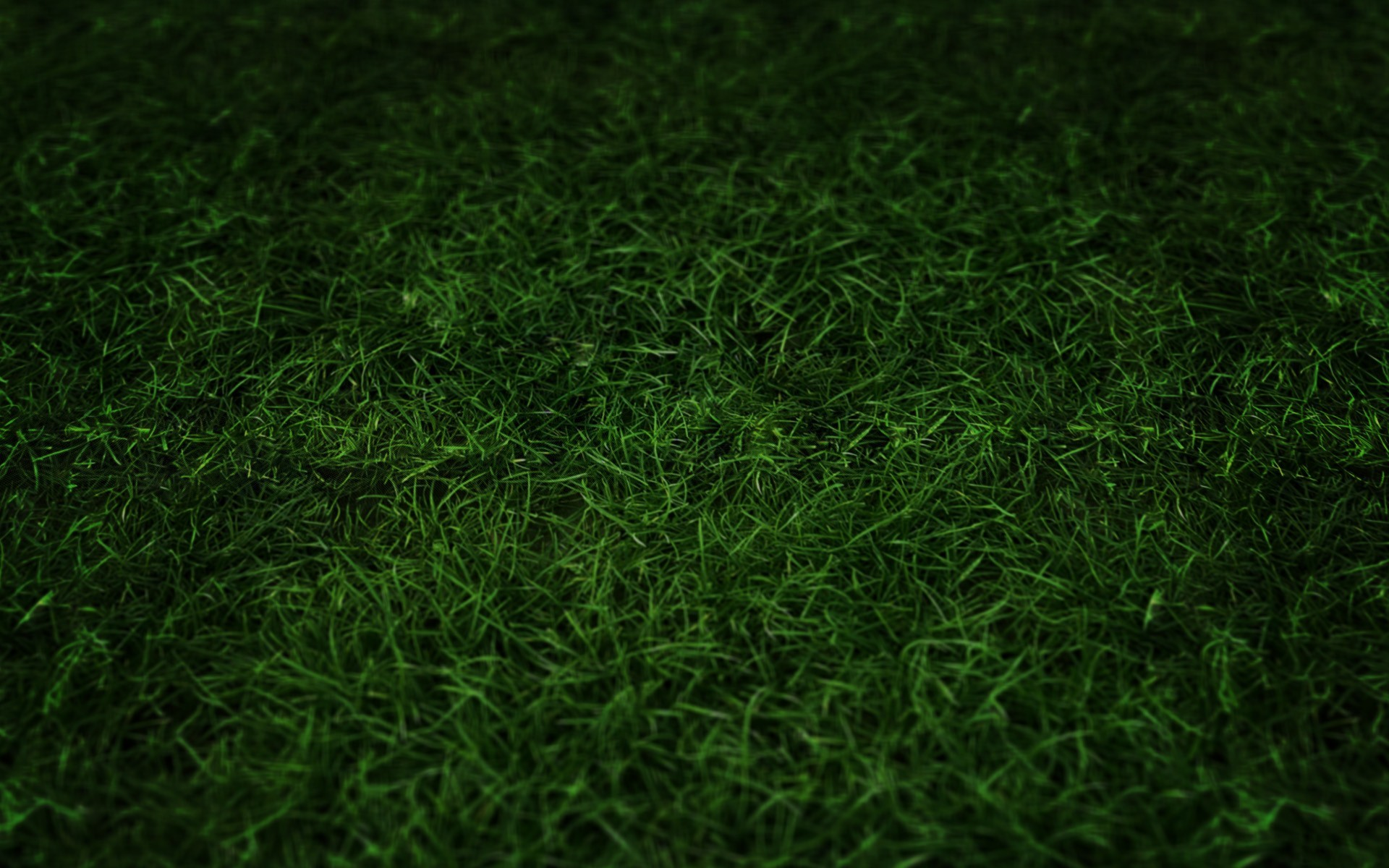 Football Field Grass Wallpaper Green grass 1280x800 wallpaper 1920x1200