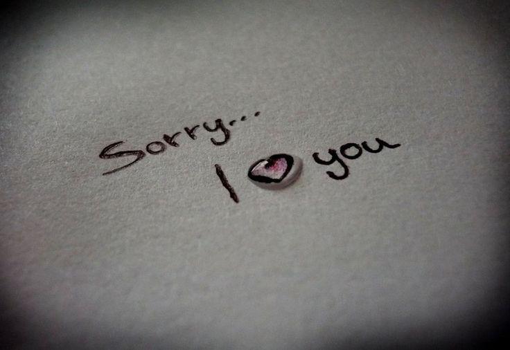 Am Sorry 736x506