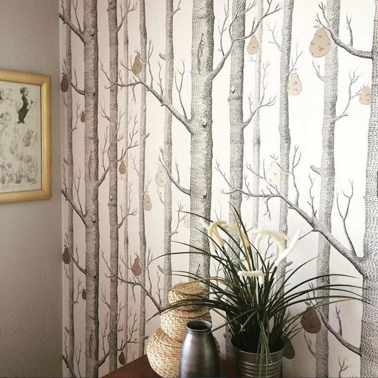 cole and son woods and pears wallpaper 955027 1268x1268