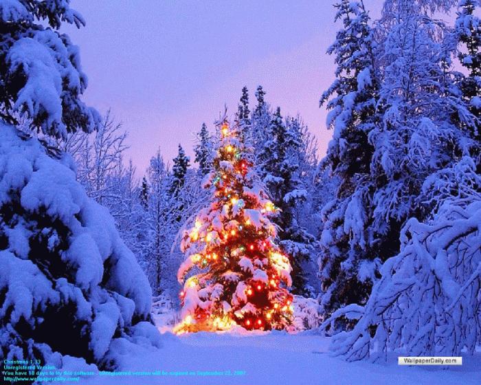 49+] Bing Free Christmas Wallpaper