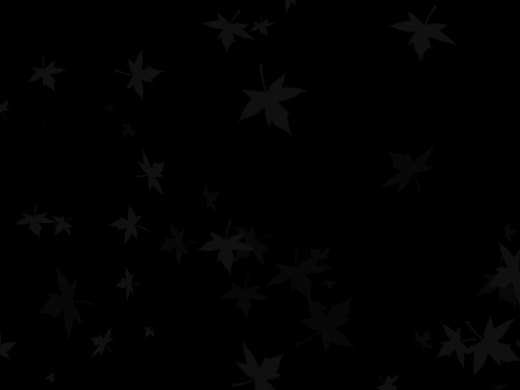 47 Plain Black Wallpaper On Wallpapersafari