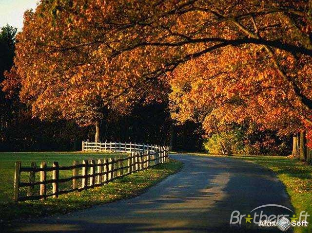 Download Autumn Blues Screensaver Autumn Blues Screensaver 14a 640x479