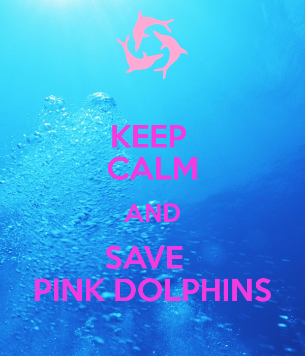 Pink Dolphin Wallpaper Pink Dolphin Clothing ...