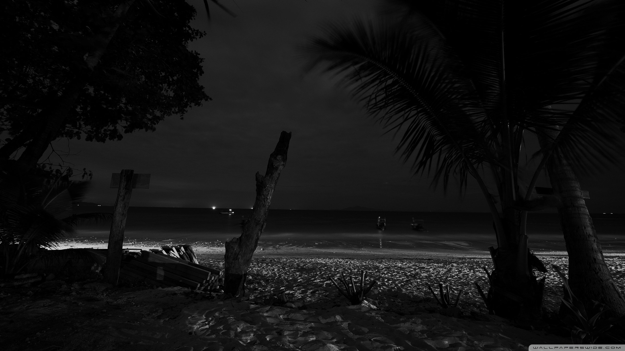 Beach At Night 2 Wallpaper 191 2560x1440 pixel Exotic Wallpaper 2560x1440
