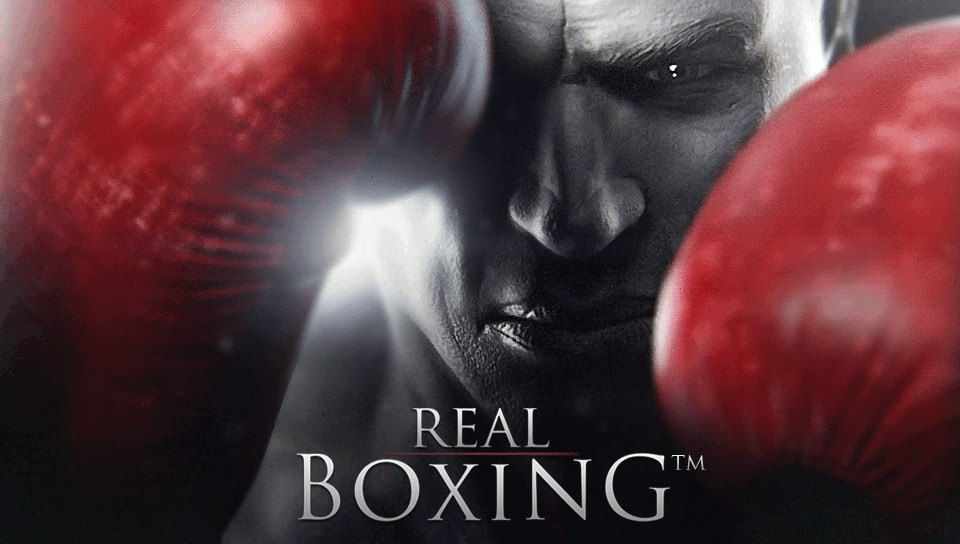 Free download Boxing Bag Wallpaper Real boxing wallpaper