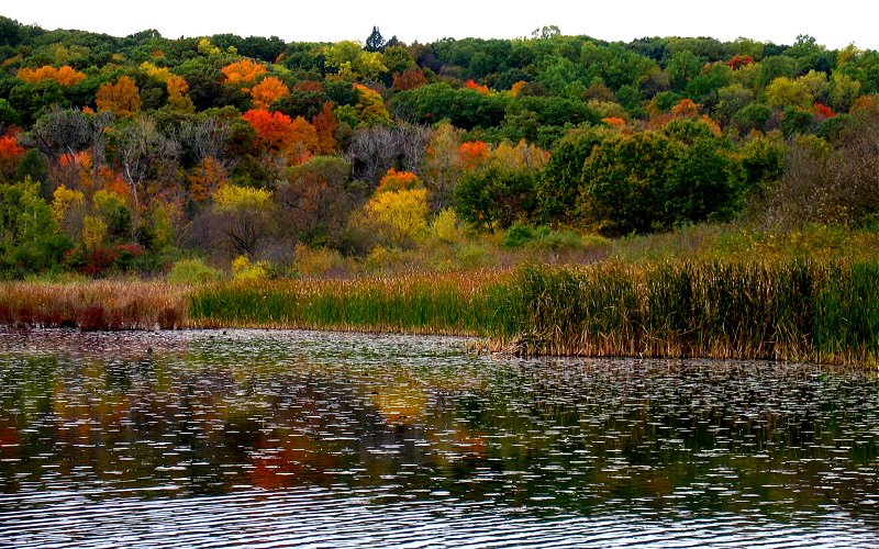 early color above the huron river 800x500