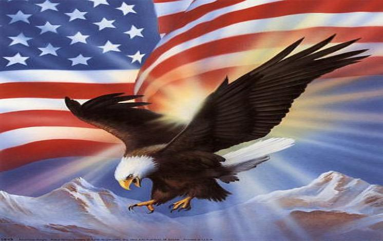 Us Flag Eagle Pictures of the american flag 746x469