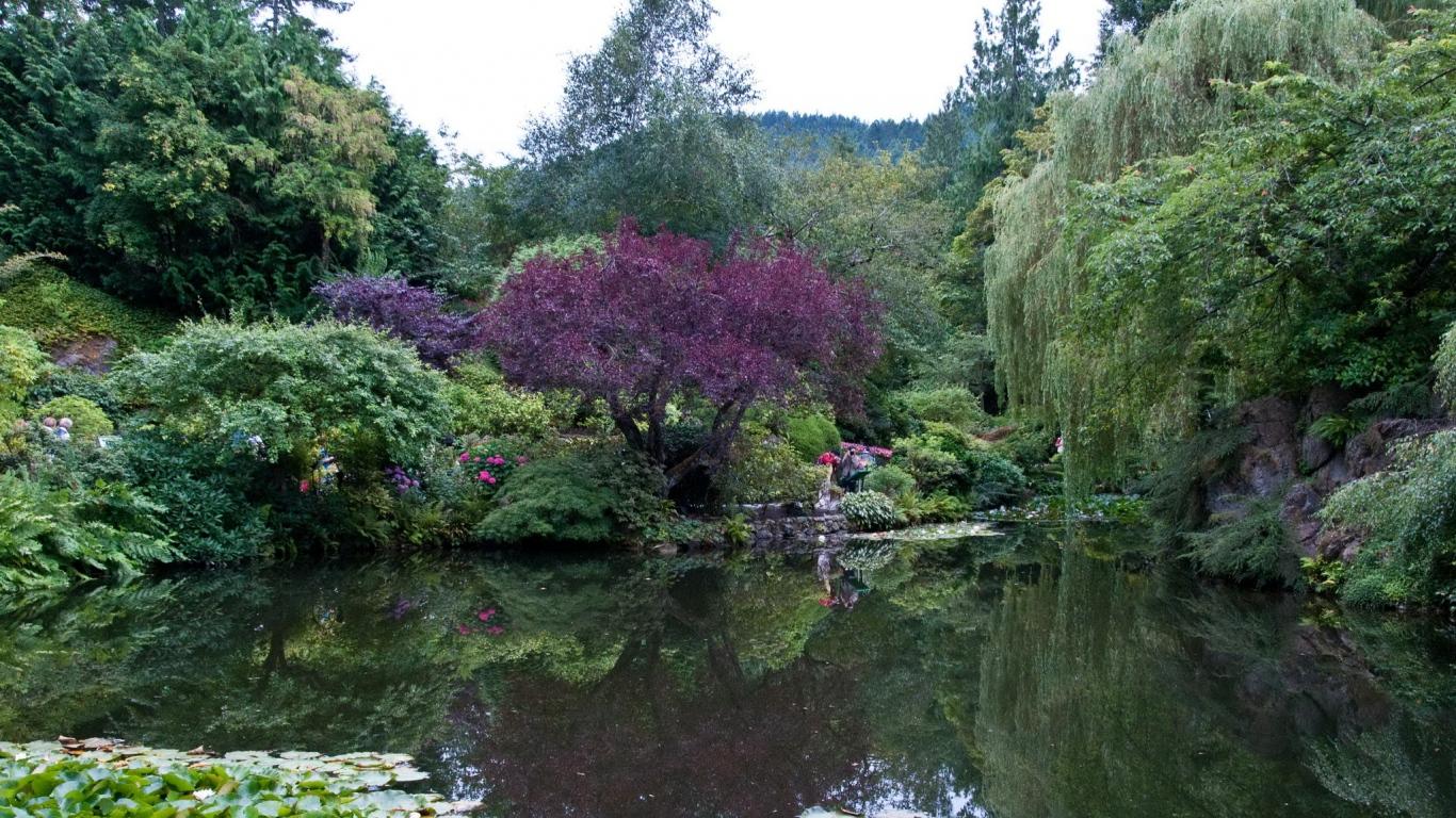 1366x768 Wallpaper park canada garden pond victoria butchart 1366x768