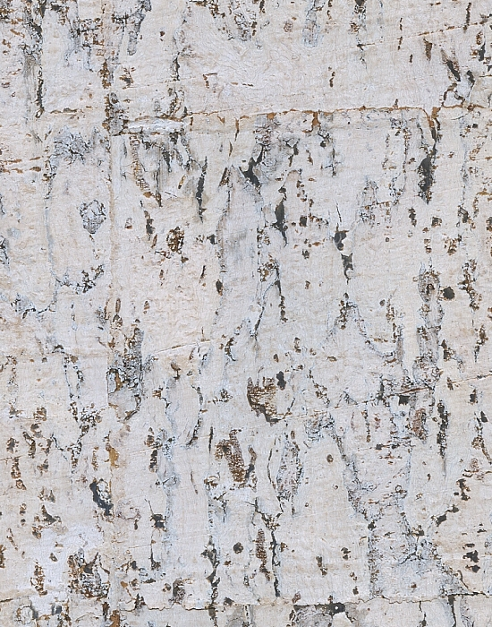 CW7545 Real Cork Wallpaper Silver Foil Backing Birch Wallpaper by 550x700