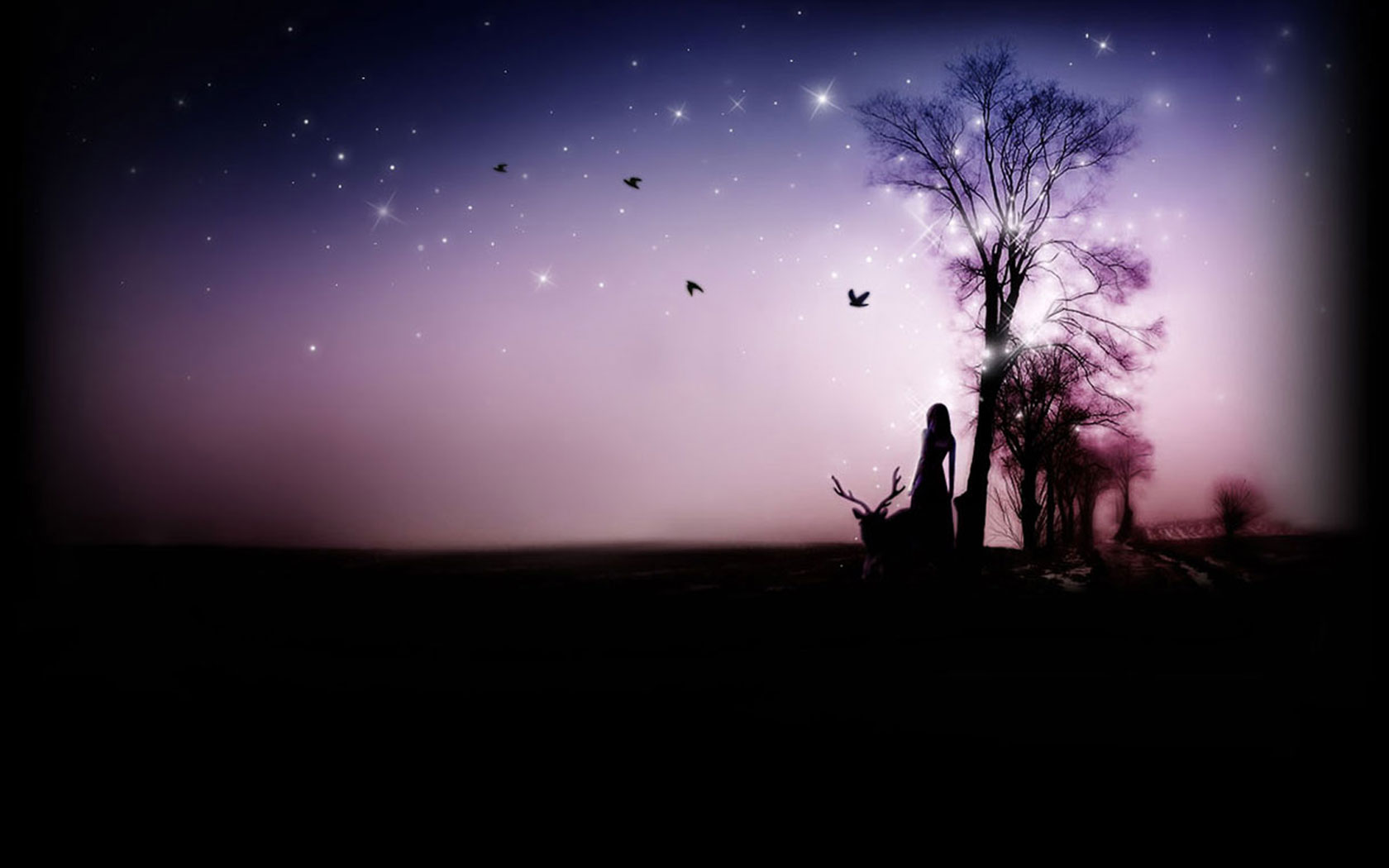 Dreamy Night Download Dream Wallpapers