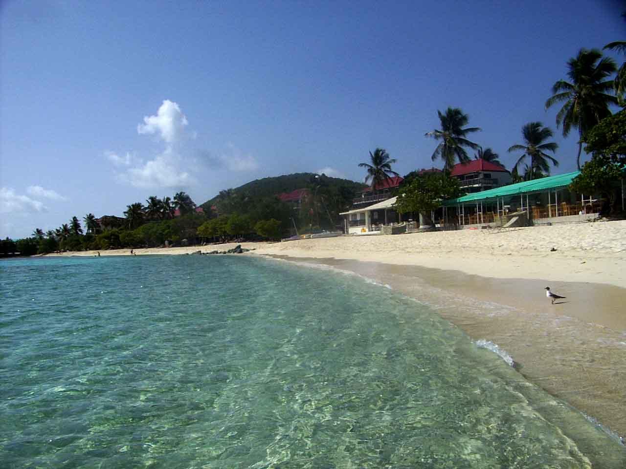 Wallpapers For Caribbean Beaches Wallpaper Desktop 1280x960