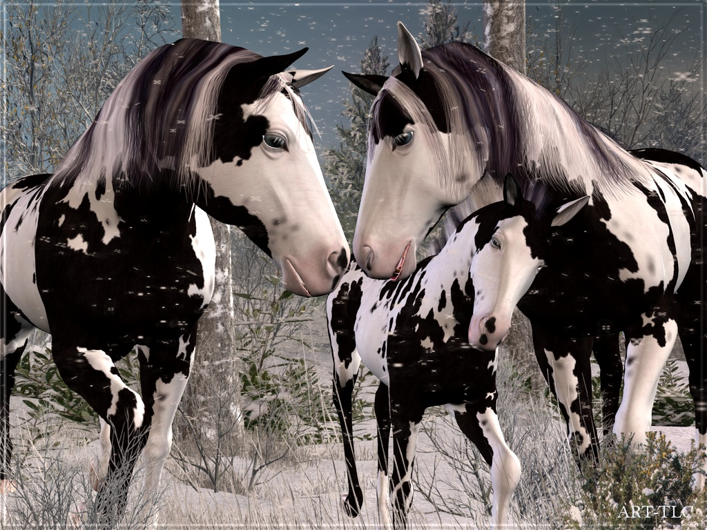 Wallpapers by ART TLC Wallpapers TLC Horses on Snowy Mountain 1024x768
