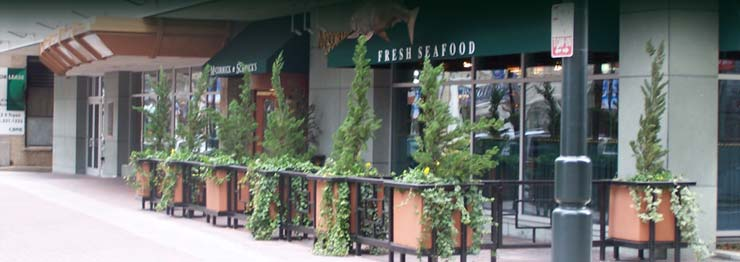 charlotte nc restaurants image search results 740x262