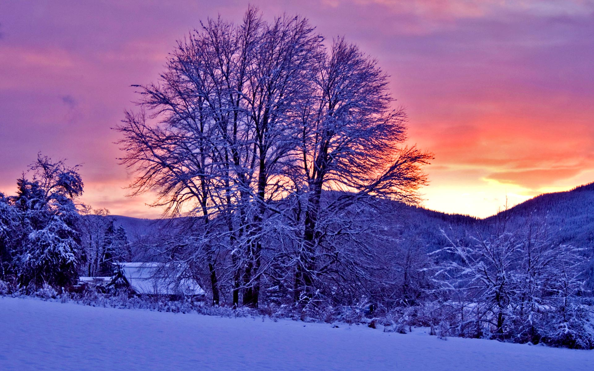 Winter Sunset HD Backgrounds Wallpapers Source 1920x1200