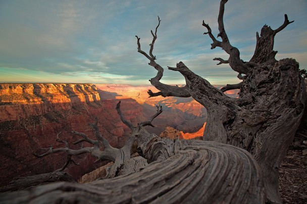 Grand Canyon   National Geographic Photo Contest 2012   National 608x405