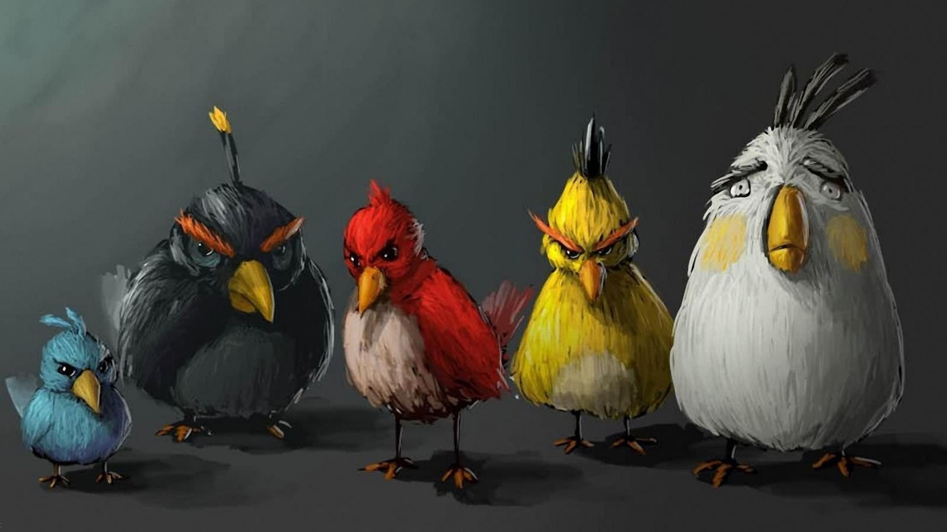 Angry Birds Art Pictures HD Wallpaper Angry Birds Art Pictures 1920x1080