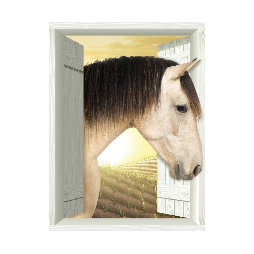 AMD7025 Horse Plain Removable Large Wallpaper Mural Lowes Canada 850x850