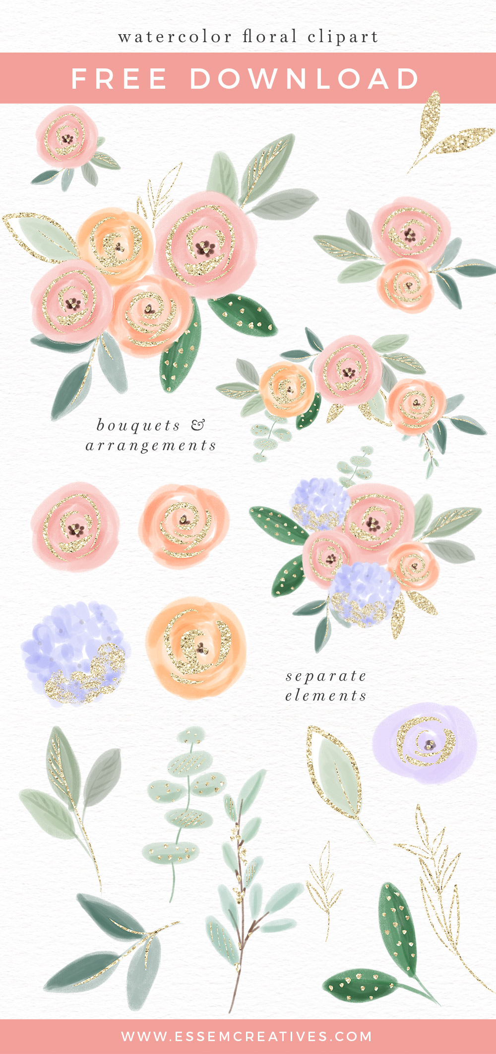Watercolor Flower Images Clipart Graphics Border Background 1000x2126