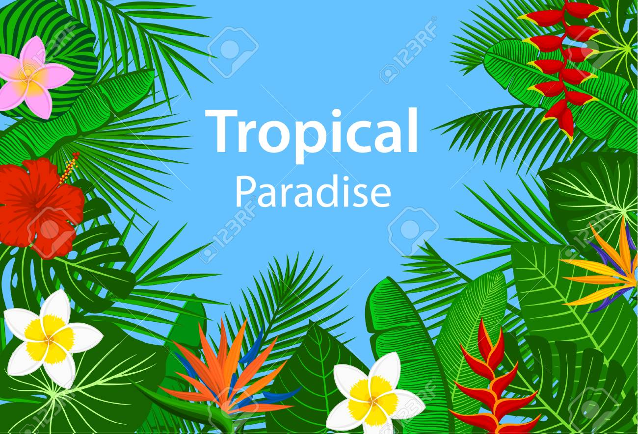 Tropical Paradise Background With Tropic Exotic Jungle Plants 1300x885
