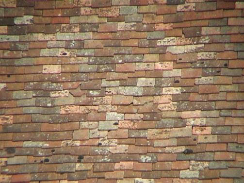 Brick Wallpaper Lowes Design 503x377