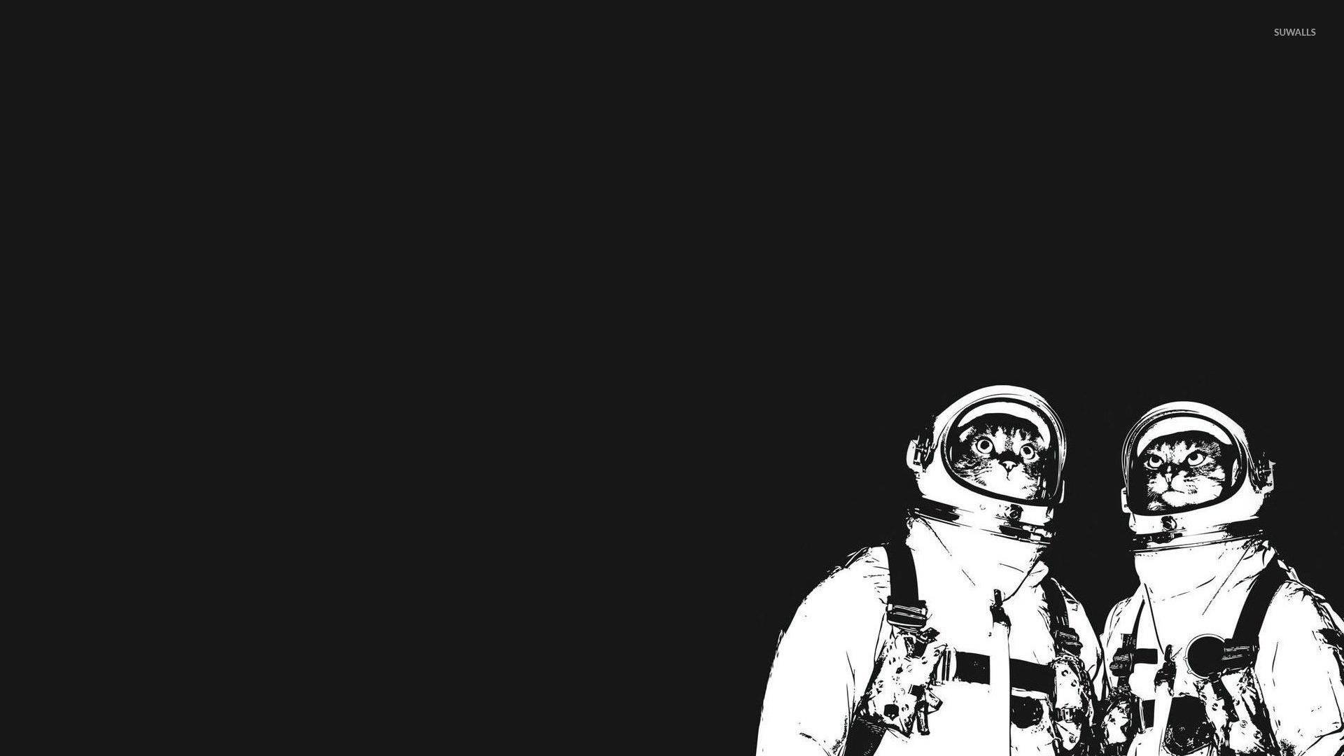 Cat astronauts wallpaper   Funny wallpapers   14332 1920x1080