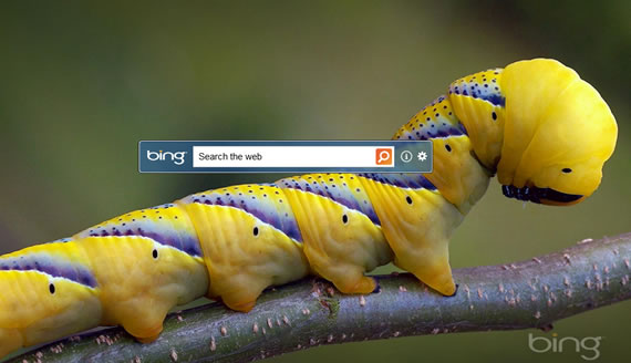 How To Change The Wallpaper Daily Bing Desktop Download 570x328