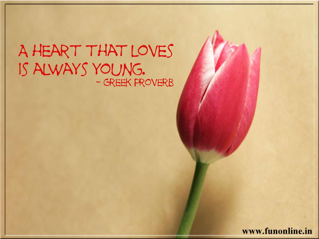 quotes love quotes love quotes love quotes love quotes love quotes 1280x960