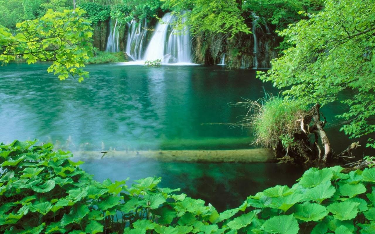 Download Beautiful 3D Nature WaterFall HD Wallpaper 1280x800
