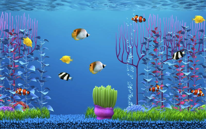 Free fish wallpaper and screensavers wallpapersafari for Moving fish screensaver
