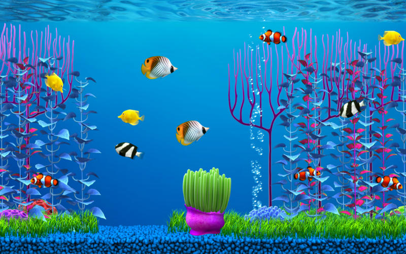Free fish wallpaper and screensavers wallpapersafari for Fish tank screen