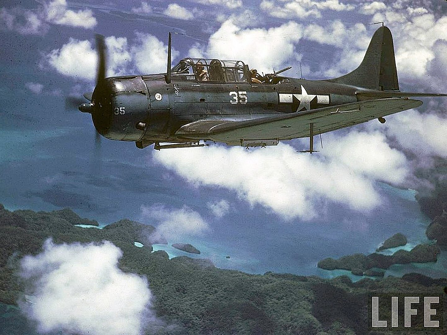 6 Douglas SBD Dauntless HD Wallpapers Background Images 1440x1080