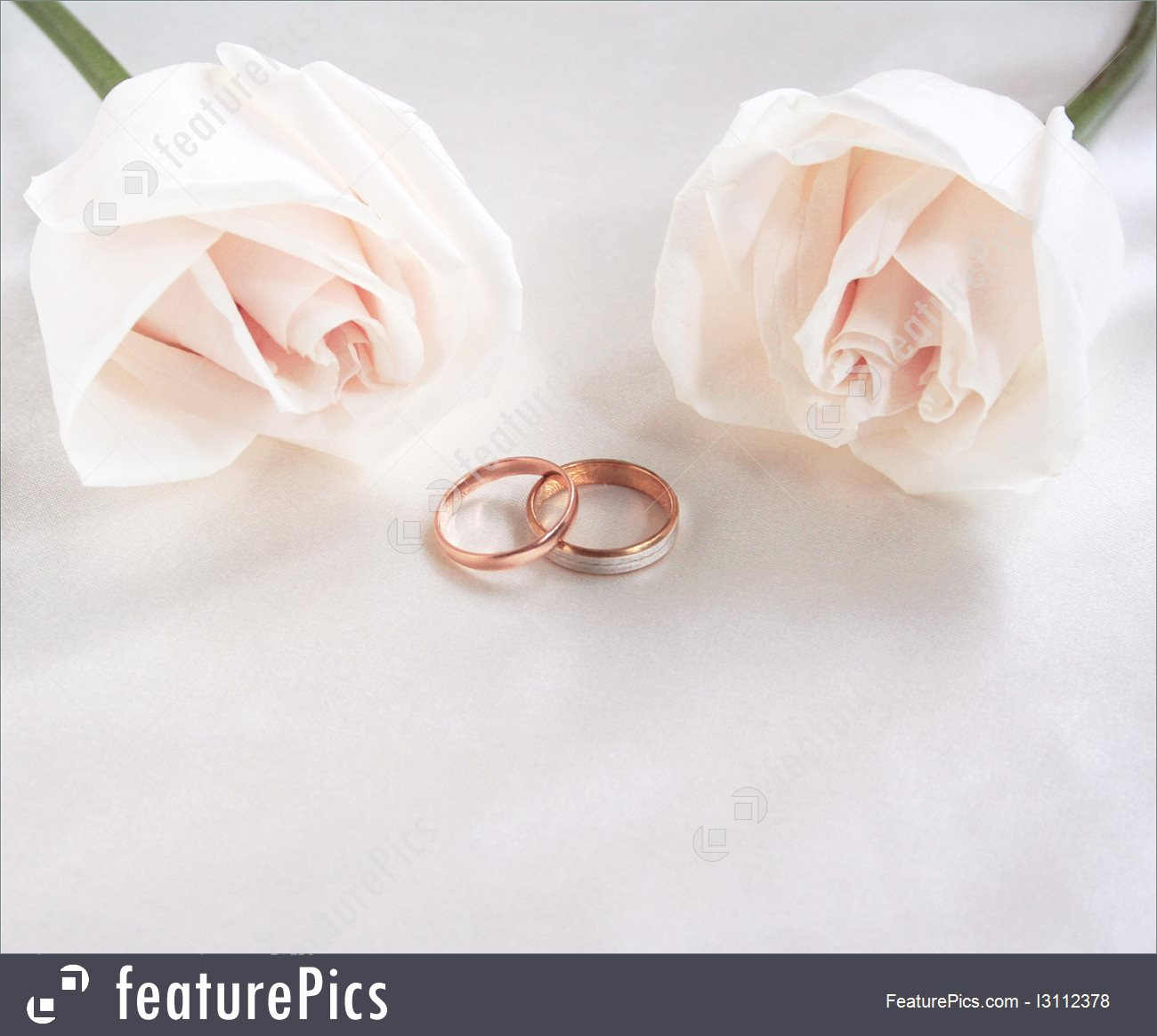 Wedding Rings And Roses As Background 1300x1165