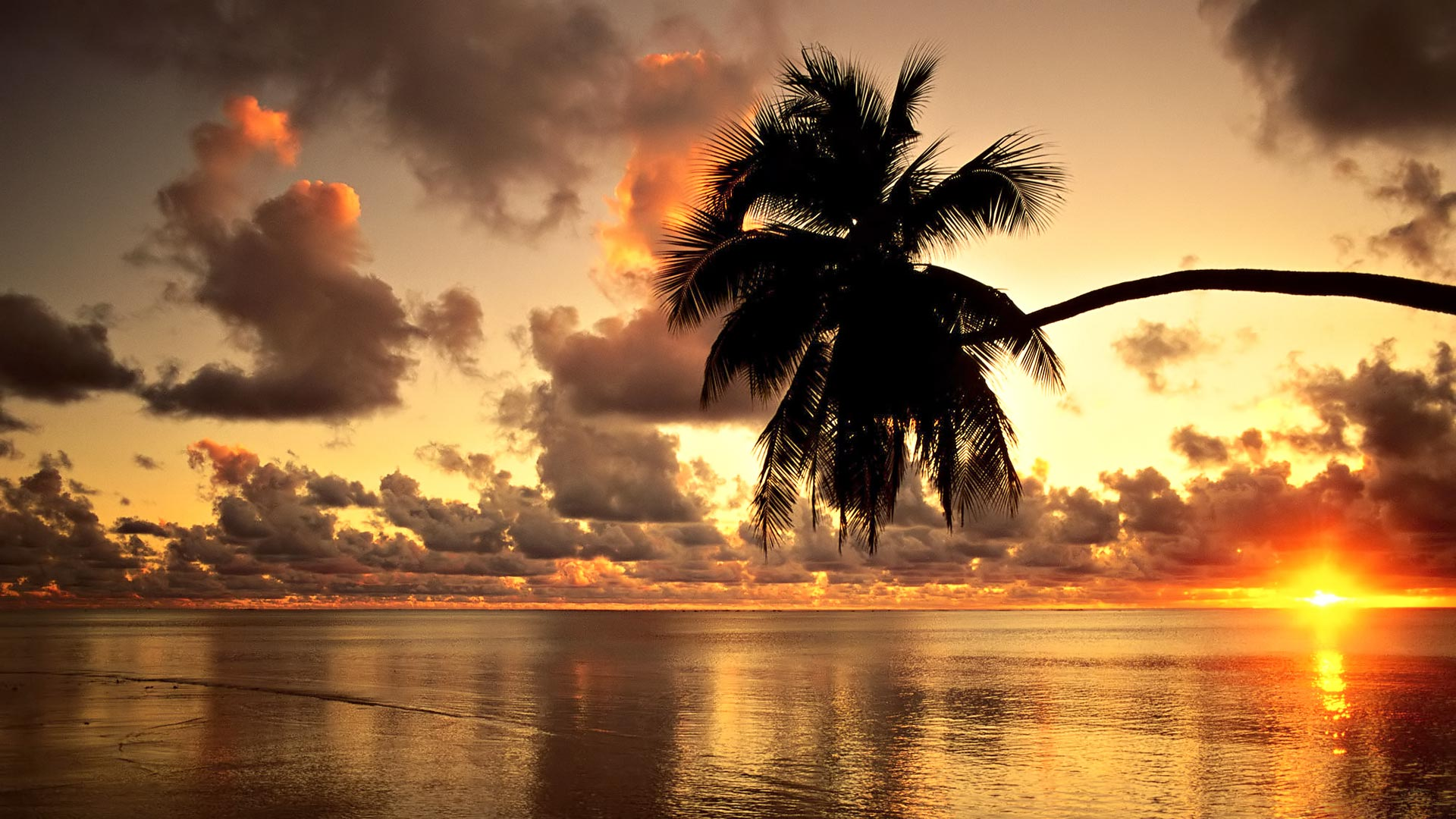 Hawaii Sunset Beach Wallpaper 12984 Wallpaper WallpaperLepi 1920x1080