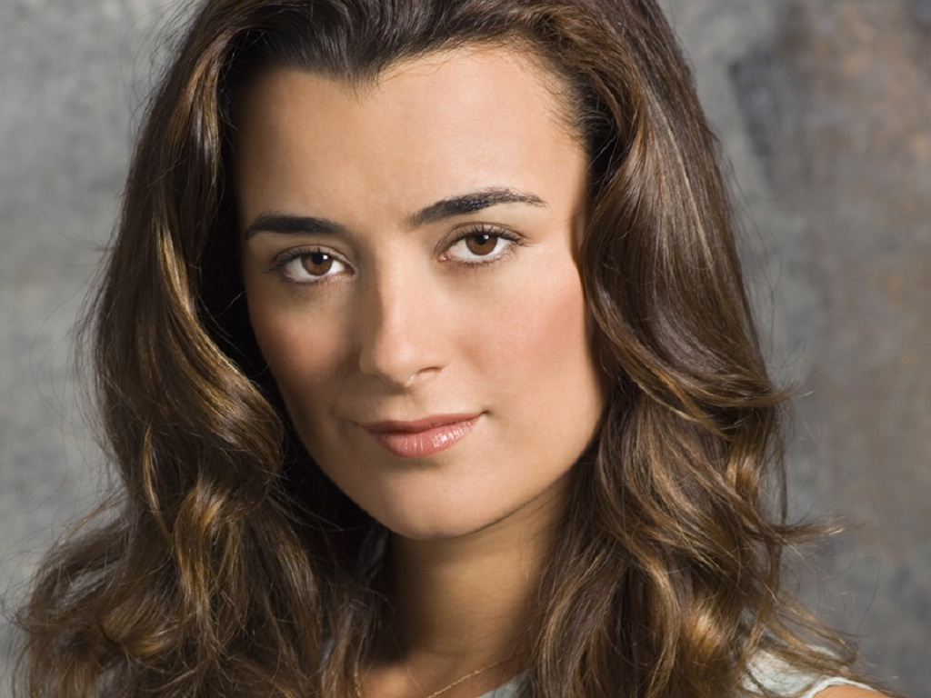 Free Download Cote De Pablo 1024x768 For Your Desktop Mobile