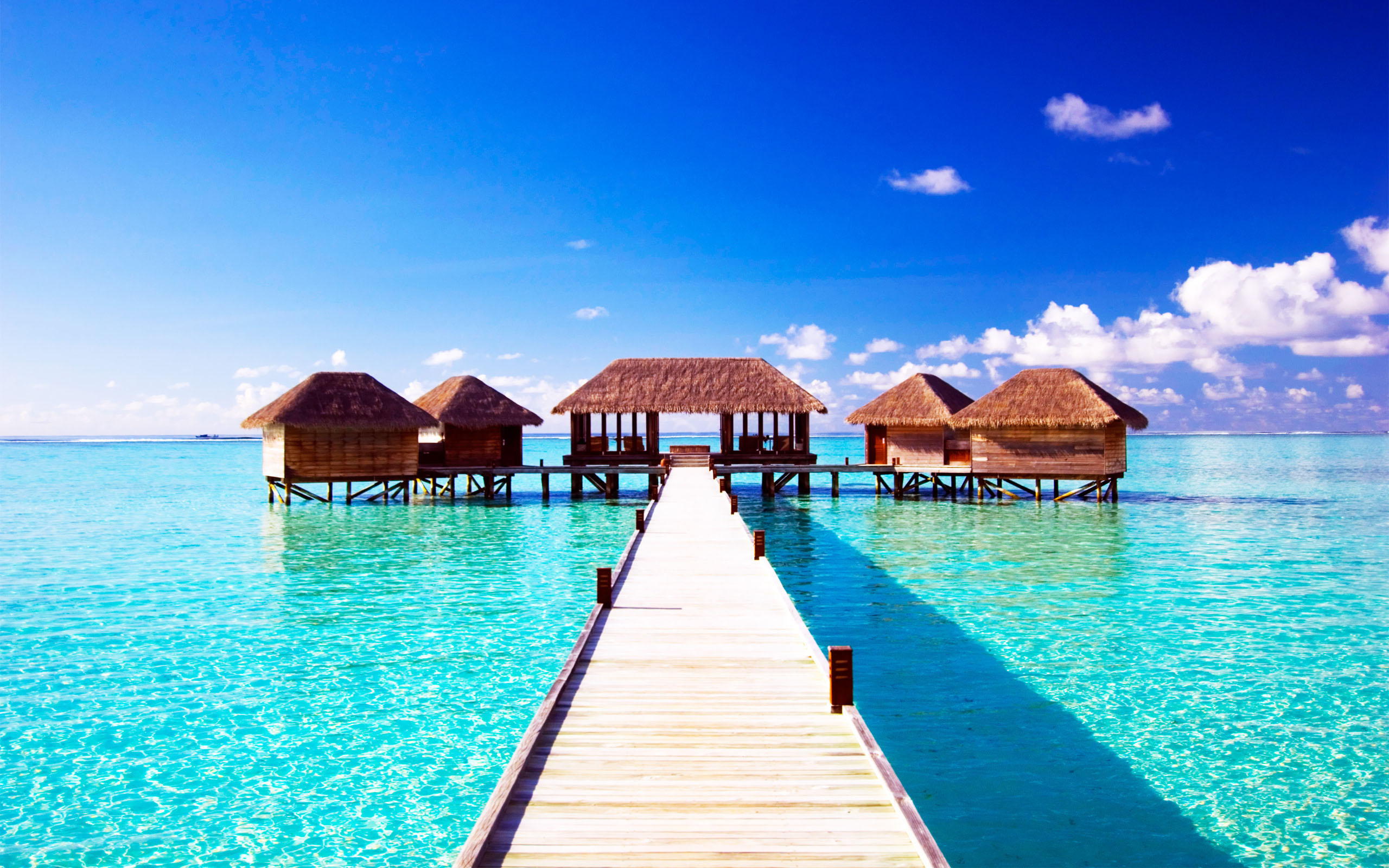 Maldives Beach Wallpapers Best Wallpapers 2560x1600