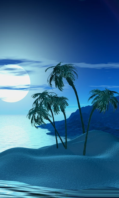 Free Download Tropic Night Smartphone Wallpapers 480x800 Hd Wallpaper For Cell Phone 480x800 For Your Desktop Mobile Tablet Explore 50 Smartphone Wallpaper Hd Hd Wallpapers For Android Phones Phone